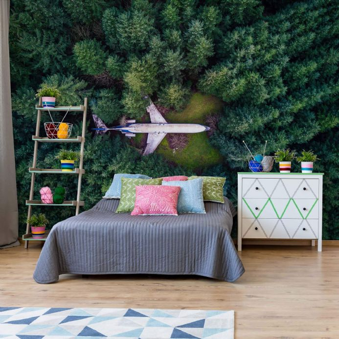 Wall mural photo wallpapers Crashed Plane| Homewallmurals Shop